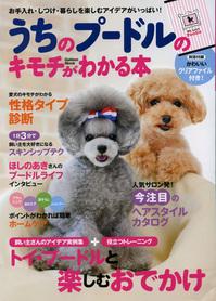 uchino-poodle02.jpg