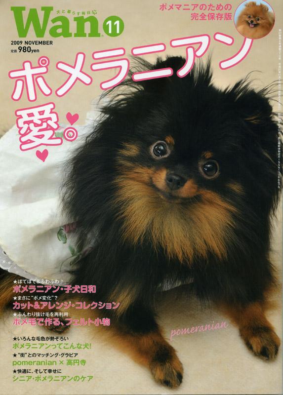 http://yoyogiuehara.funkyd-plus.com/media_o/images/wan-pome.jpg